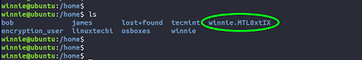 Additionally, we will also remove the /home/winnie.MTL8xtIX directory. This is a backup home folder that was created when we ran the initial migration command. You can find it by locating the directory that contains .MTL8 in the name.