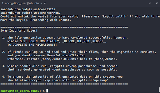 Upon successful completion of the file encryption, some instructions will be printed out on the terminal to guide you on the next steps to follow. We will follow these steps below to gracefully wind up the entire process.
