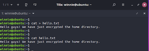 But before going any further, you need to confirm that you can read and write files on your home directory. To give this a try, we will create a simple hello.txt text file.