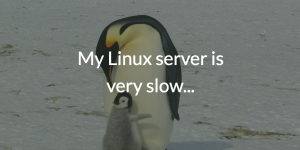 My Linux server is very slow...