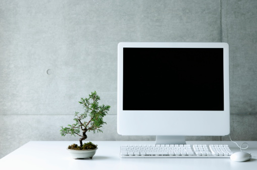 Desktop PC with small bonsai