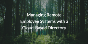 Managing Remote Employee Systems with a Cloud-Based Directory