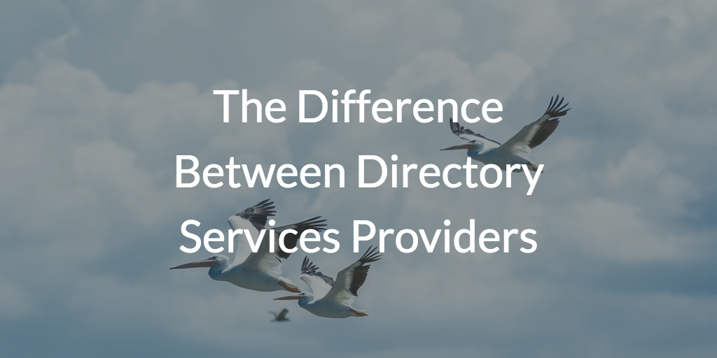 The Difference Between Directory Services Providers