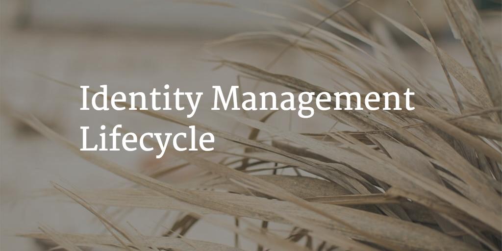 identity managment lifecycle
