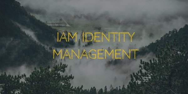 identity management iam