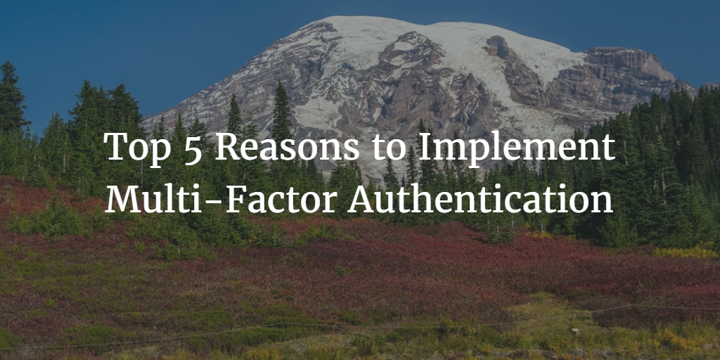 Top 5 Reasons to Implement Multi-Factor Authentication