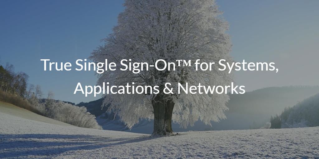 true single sign-on systems apps and networks