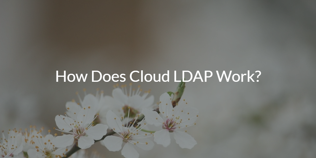 How Does Cloud LDAP Work