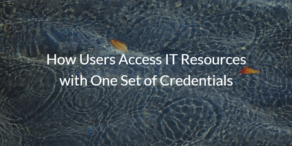 How Users Access IT Resources with One Set of Credentials