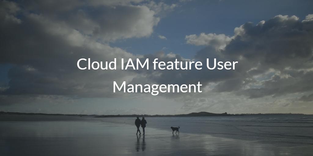Cloud IAM feature User Management