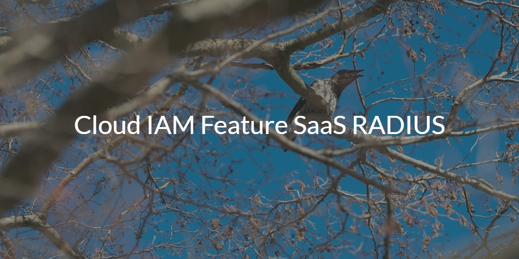 Cloud IAM Feature SaaS RADIUS