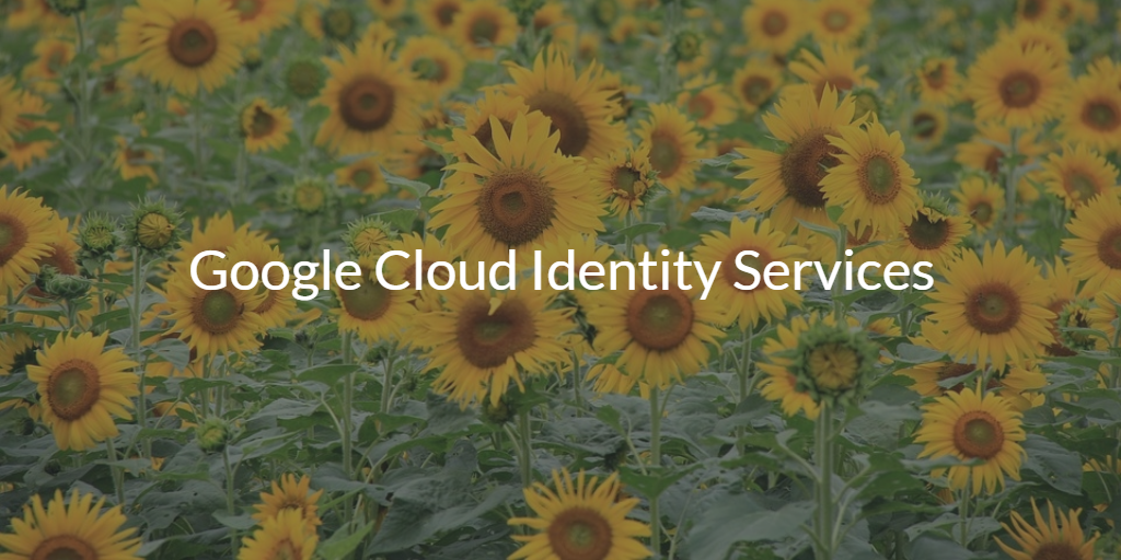 Google Cloud Identity Services