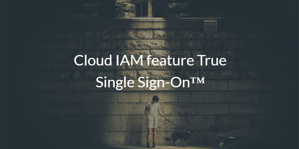 Cloud IAM feature True Single Sign-On