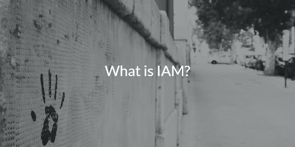 What is IAM