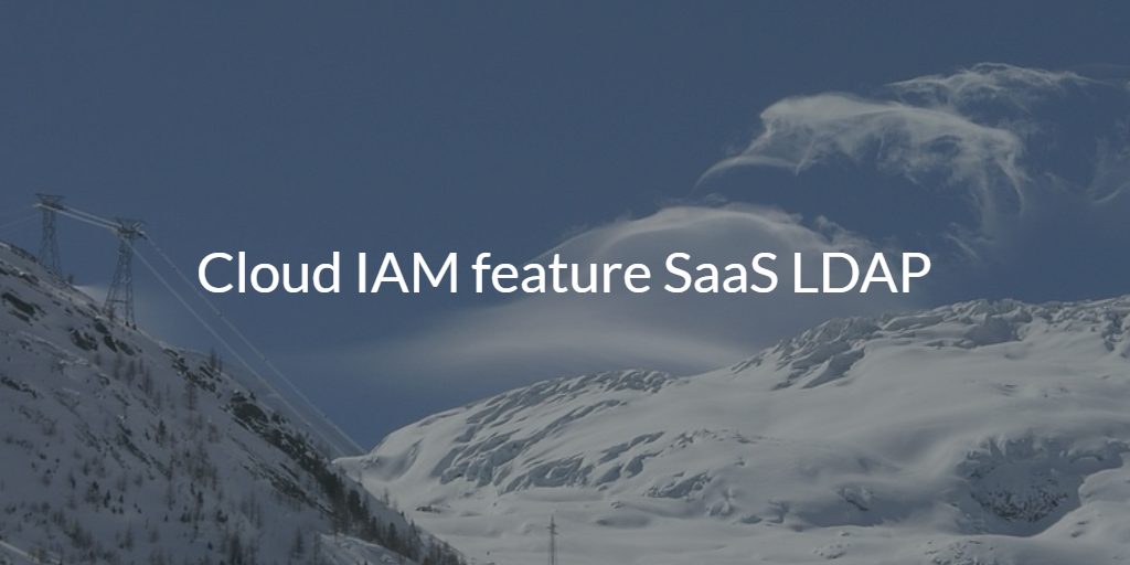 Cloud IAM feature SaaS LDAP