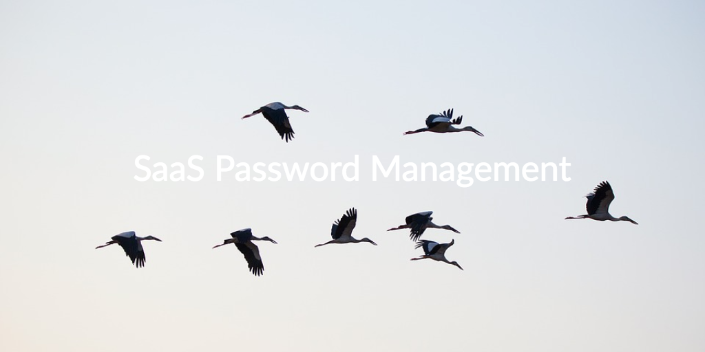 SaaS Password Management