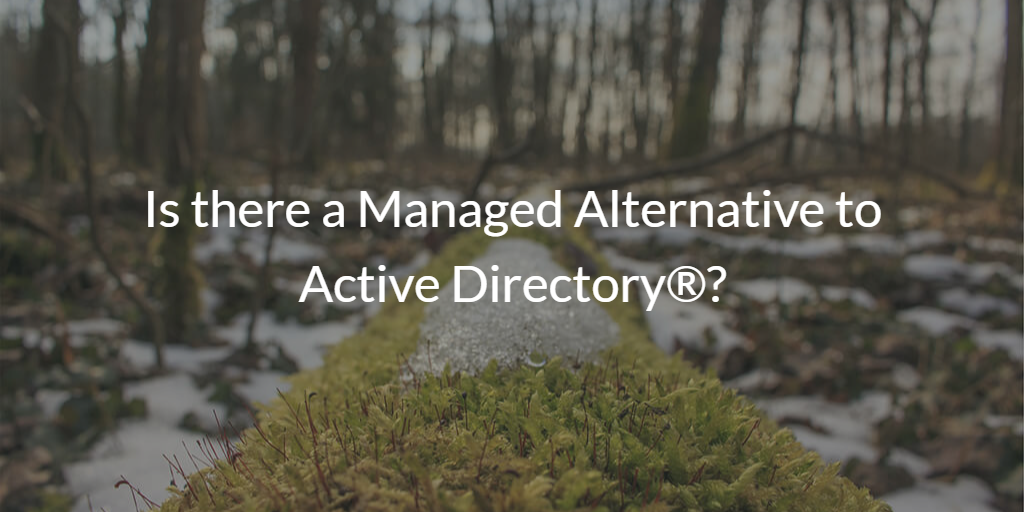 Is there a Managed Alternative to Active Directory®?