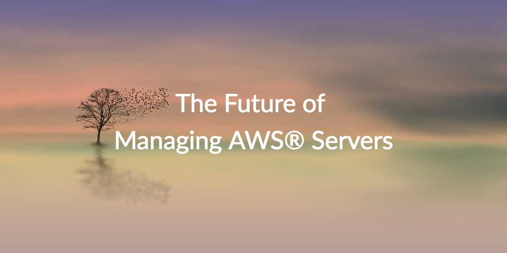 future managing aws servers