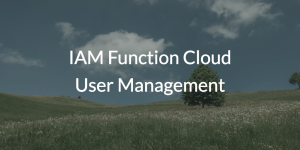 IAM Function Cloud User Management