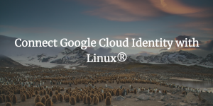 Connect Google Cloud Identity with Linux<sup>®</sup>