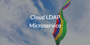 Cloud LDAP Microservice