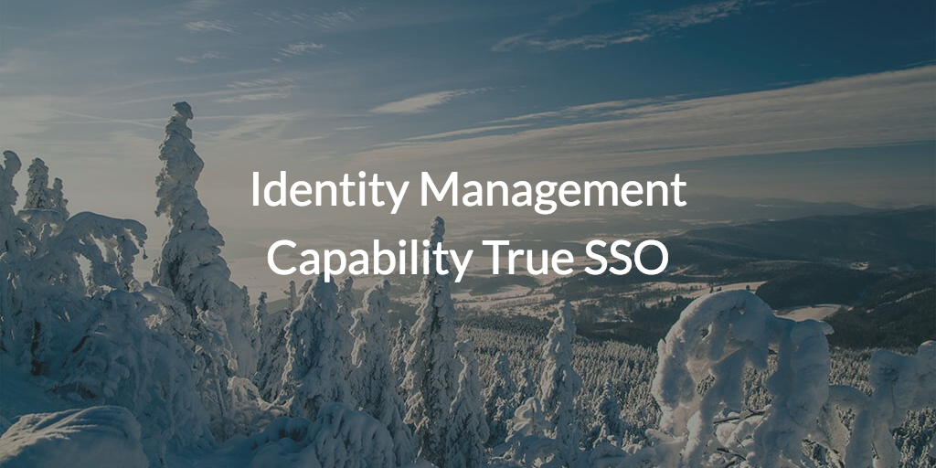 Identity Management Capability True SSO