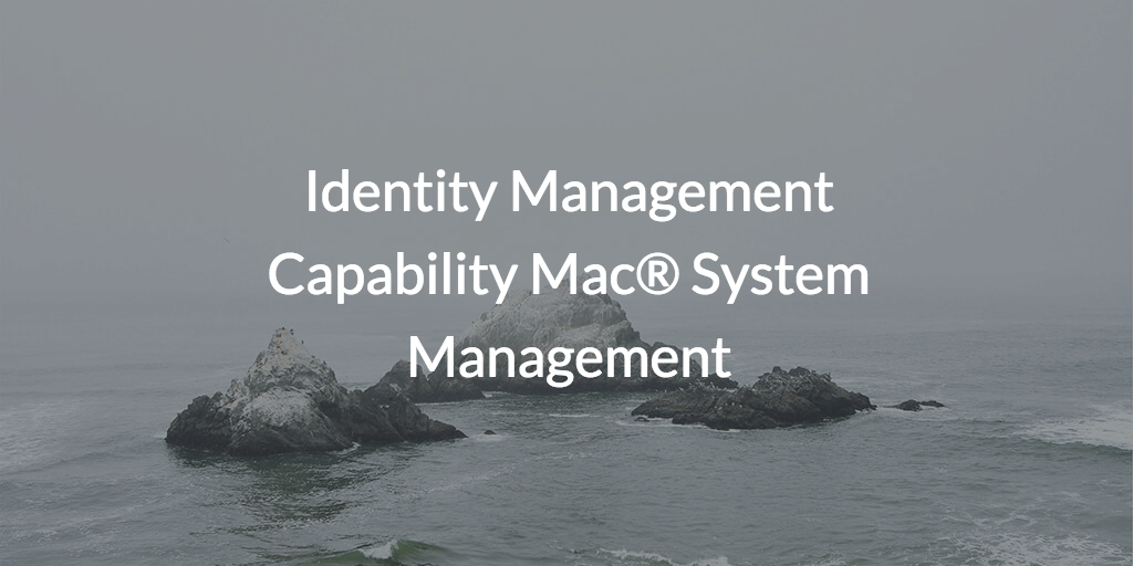 mac system management