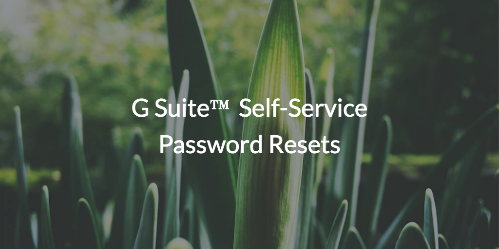 self-service password resets