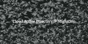 Cloud Active Directory Migration written over migrating birds photo