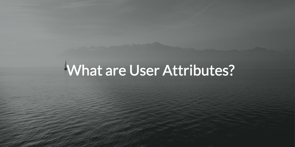 identity management and user attributes