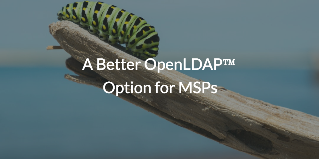 A Better OpenLDAP Option for MSPs written over picture of caterpillar