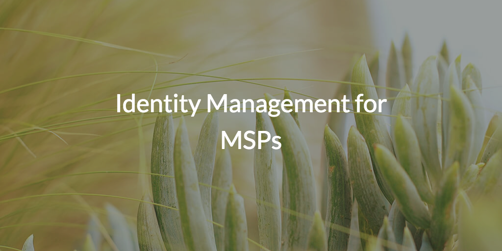 Identity Management for MSPs