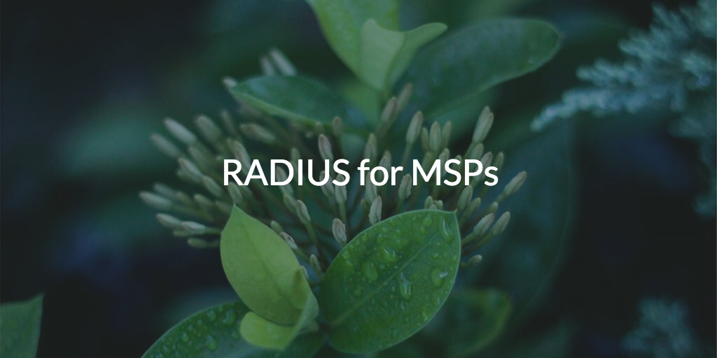 RADIUS for MSPs