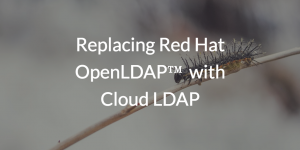 Replacing Red Hat OpenLDAP™ with Cloud LDAP