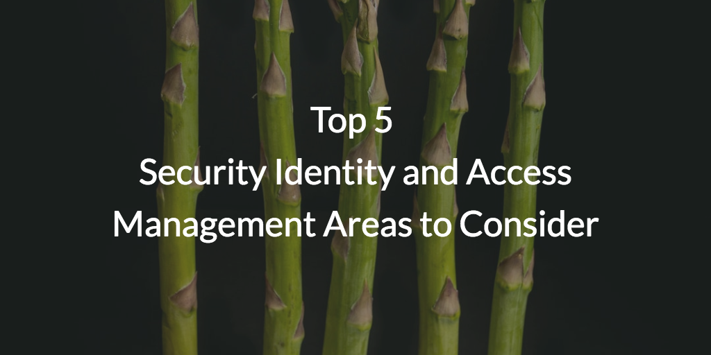 Top 5 Security and Access Management