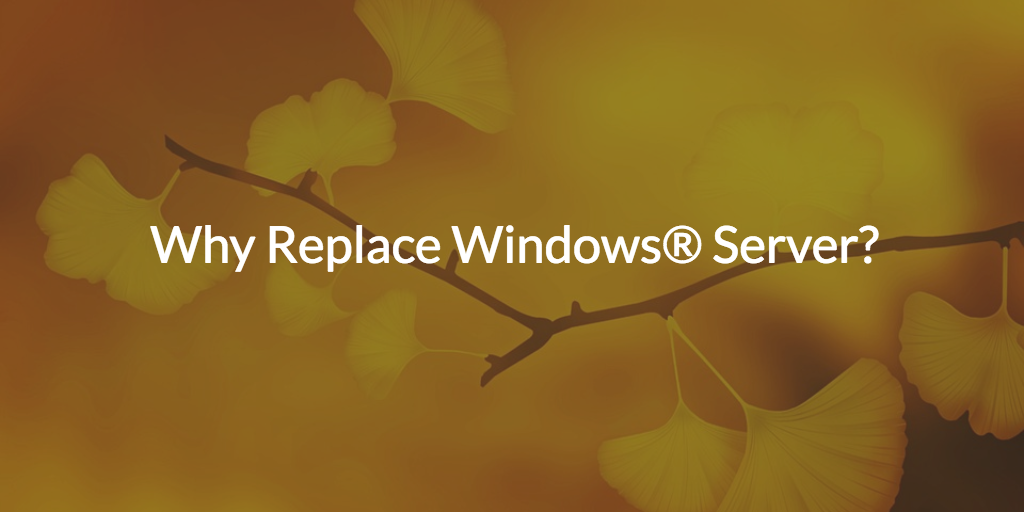 5 Reasons Why You Should Replace Windows Server