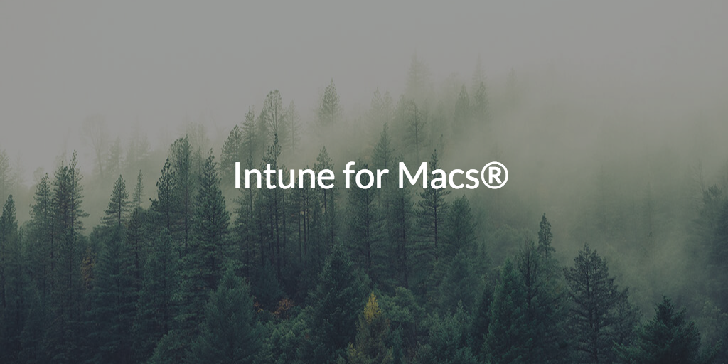 Intune for Macs®