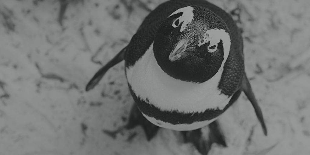 Remote Linux Management
