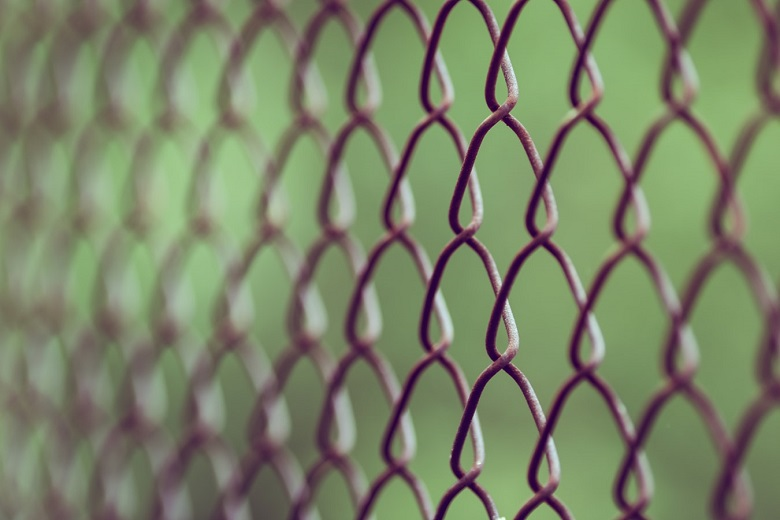 Pictured is a chainlink fence against a green background